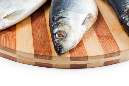 gibel: close up of fish head