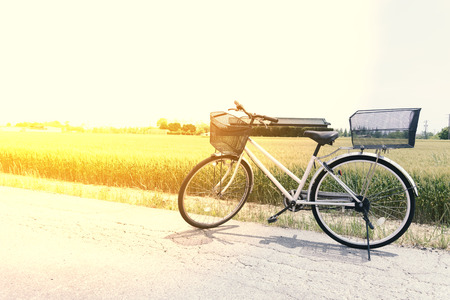 gripper: Bicycle on the road in front of the rice field farm in nature, relex conceptm vintage tone