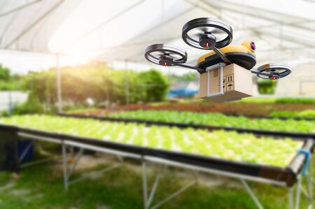 Hydroponics vegetables farming drone at indoors modern farm background. Service for delivery shipping healthy organic product and goods to customer. Business and farming innovative technology gadget Banco de Imagens