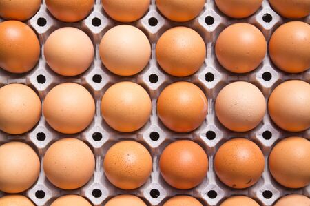 packaged: Chicken brown egg closeup  Stock Photo