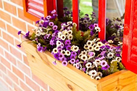 Decorative violet flower  photo