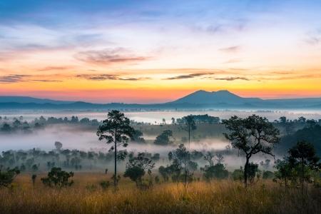 山の風景の中の雄大なサンセット