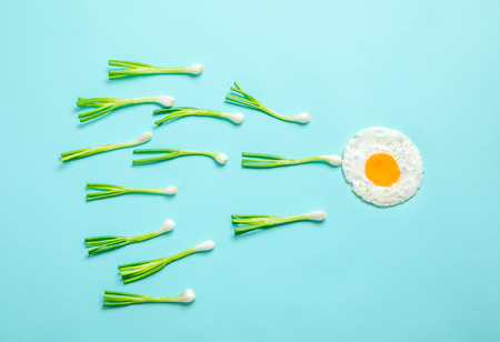 fried egg and scallions, fertilization
