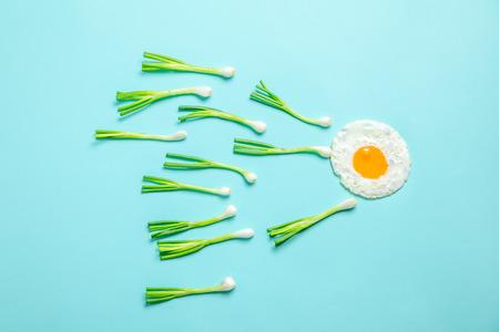 fried egg and scallions, fertilization
