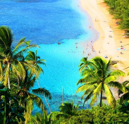 kauai: hawaiian beach