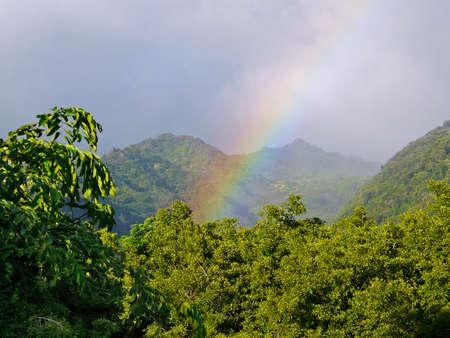 hawaiian rainbow Imagens