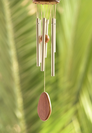 wind chime and pal leaves in  background