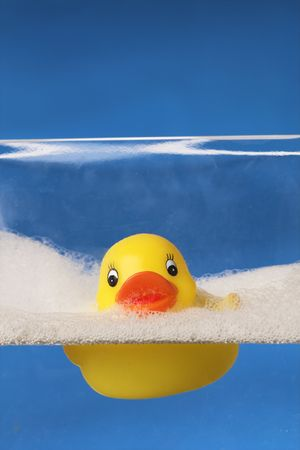 rubber duck floating on water Stock Photo