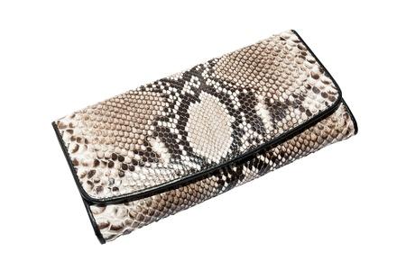 snake skin leather bag Reklamní fotografie