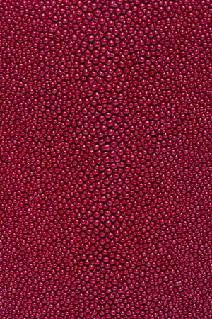 red stingray skin texture  Archivio Fotografico