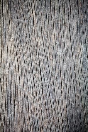 bark texture: Wood texture