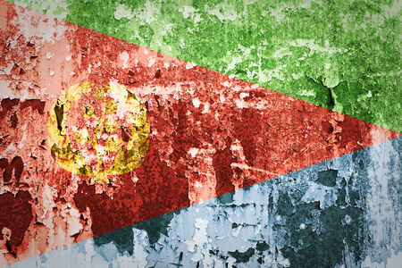 eritrea: Grunge Eritrea flag on steel wall