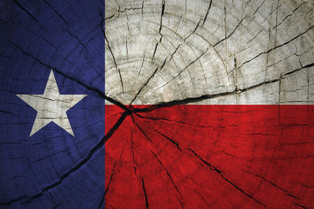 Texas State Flag painted on wood texture
