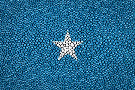 Somalia Flag painted on stingray skin texture  Stock Photo