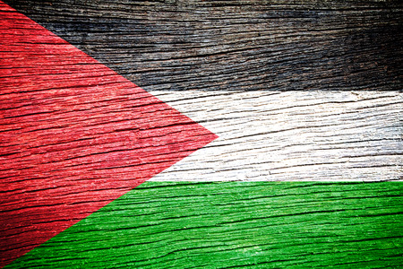 Palestine Flag painted on old wood texture  photo