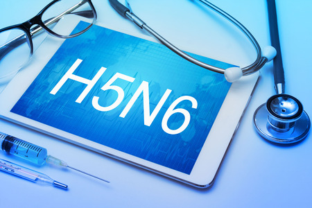 h1n1 vaccination: H5N6 word on tablet screen with medical equipment on background