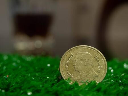 Coin king bhumibol adulyadej of thailand on green grass close up backgrounds
