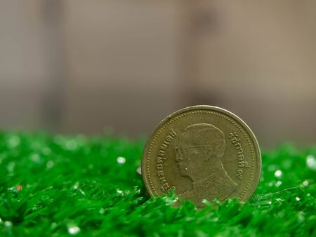 Coin king bhumibol adulyadej of thailand on green grass close up background