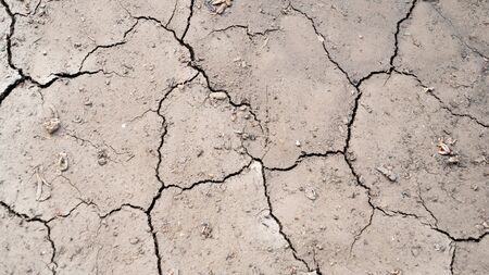 Arid, without water, causing the soil to crack. Look closely Stock Photo