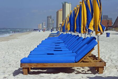 Beach chairs and umbrellas lined up on the beach
