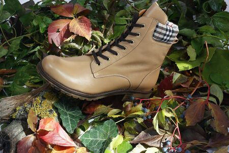 fall winter: A beige leather ladies boots sitting on a bed of leaves