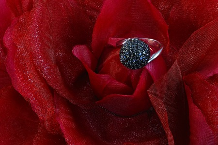 fake diamond: Silver ring with  zirconium stones on flower background