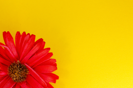redolence: Yellow background with a red flower in a corner Stock Photo