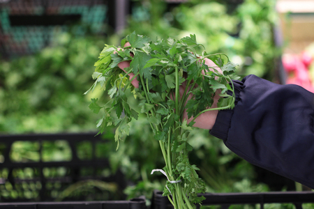 seller: A seller who chooses leaf of parsley