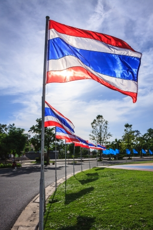 thailander: thailand flags surrounding football field in the park
