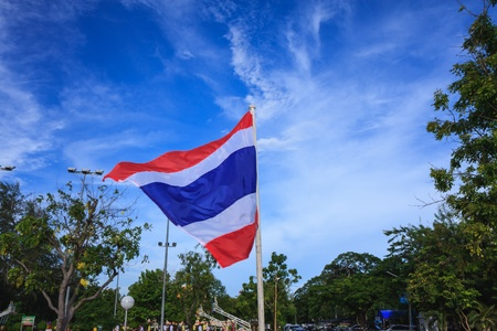 thailand flag in the park in windy day photo