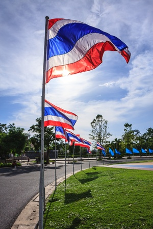 thailand flags surrounding football field in the park