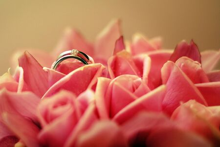 Diamond engagement rings in a pink rose. photo