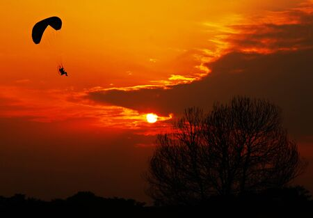 Silhouette image of a paramotor flying on sunset background. photo