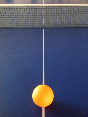 net: Table tennis ball with net