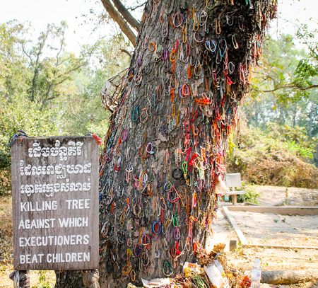 Killing tree against which executioners beat children, Phnom Penh