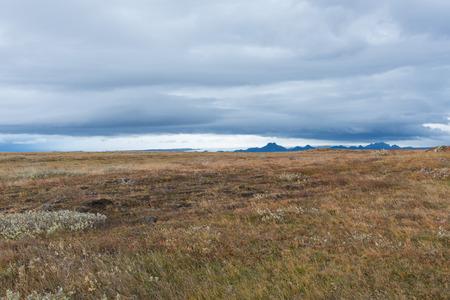 Brede vlakte met de gletsjer op de achtergrond