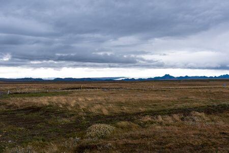 Winderig gras met gletsjer op de achtergrond Stockfoto