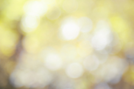 Fresh springtime with abstract natural bokeh background 스톡 콘텐츠