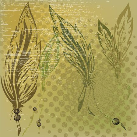 Background in grunge style with feathers
