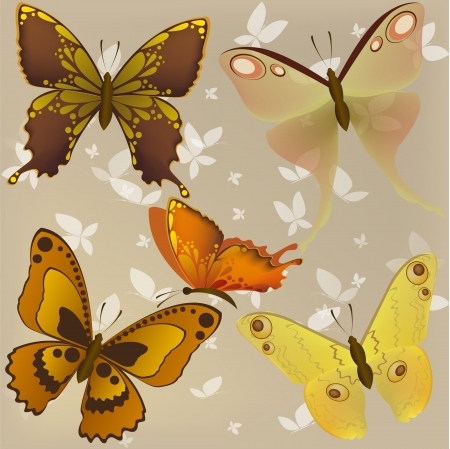 Vector set of beautiful butterflies