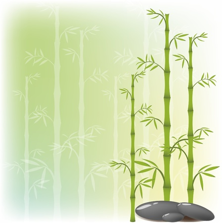 A bamboo and stone is executed japanesque Illustration