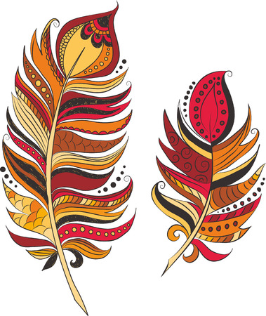 colores calidos: Feathers in warm colors