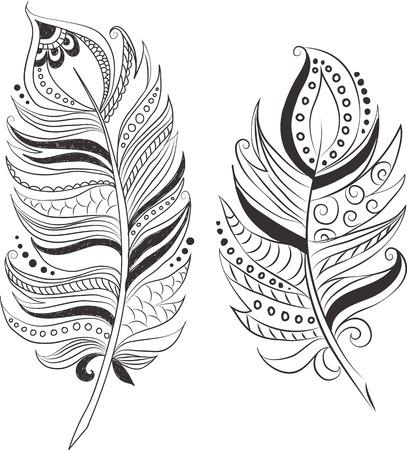 ethnics: Piume in stile tribale.