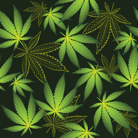 Cannabis on the black background Illustration
