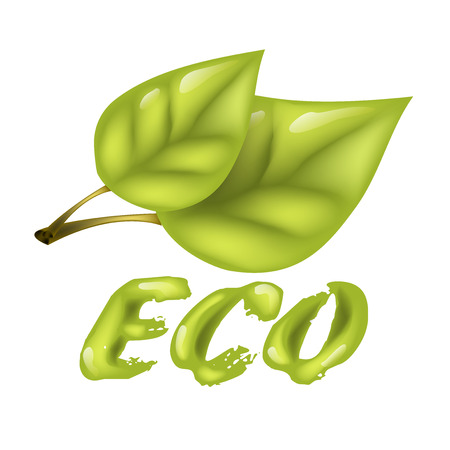 Cartoon 3d leaf, inscription Eco Products, in cartoon style Vector illustration