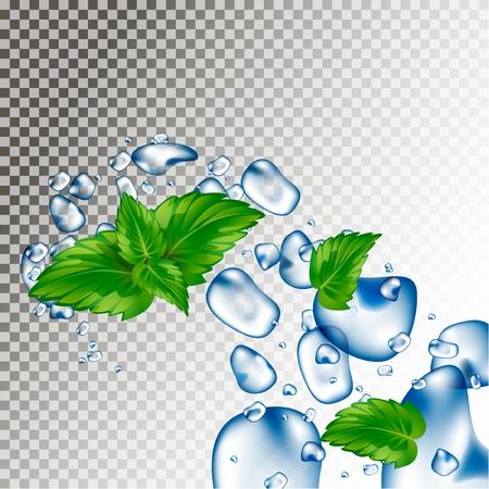 水滴とミントの葉。吹くと値下がりしました。水の鮮度。現実的なベクトルの 3 d 図です。  イラスト・ベクター素材