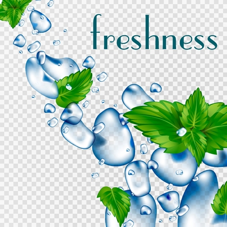 Water droplets and mint leaves. Blows and drops. Freshness of water. Realistic vector 3d illustration.