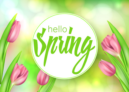 Spring text with tulip flower. Vector illustration EPS10