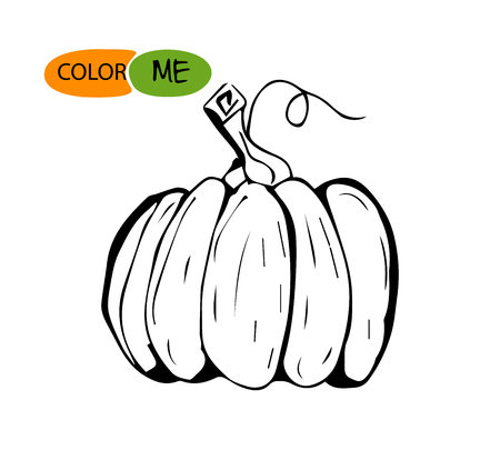 Doodle pumpkin.Vector paint hand drawn picture in cartoon style. Stock illustration.