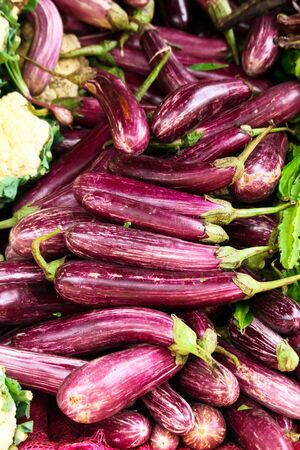A lots ripe eggplants in the market Stock Photo